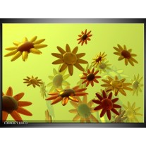 Glas schilderij Bloem | Geel, Groen, Rood