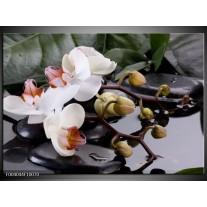 Glas schilderij Orchidee | Geel, Zwart, Wit