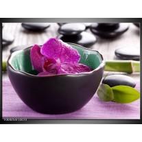 Foto canvas schilderij Orchidee | Paars, Groen