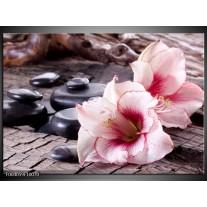 Glas schilderij Bloem | Wit, Roze, Zwart