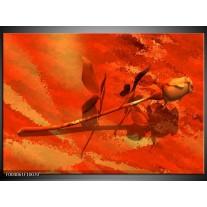 Glas schilderij Roos | Oranje, Rood, Geel