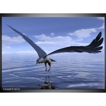 Glas schilderij Vogel | Blauw, Wit