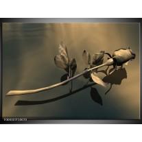 Foto canvas schilderij Roos   Grijs, Bruin