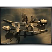 Glas schilderij Roos | Grijs, Bruin, Wit