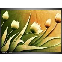 Foto canvas schilderij Tulp | Groen, Geel, Wit