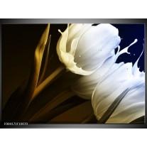 Foto canvas schilderij Tulp | Wit, Groen, Blauw