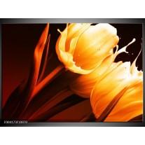 Glas schilderij Tulp | Geel, Oranje, Bruin