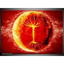 Glas schilderij Boom | Geel, Oranje, Rood