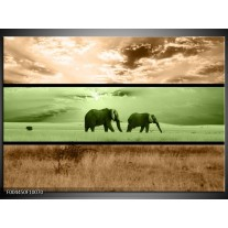 Glas schilderij Olifant   Groen, Bruin