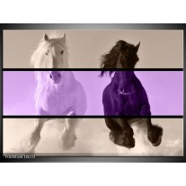 Foto canvas schilderij Paard | Paars, Zwart, Grijs
