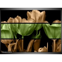 Glas schilderij Tulp | Groen, Bruin, Zwart
