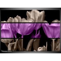 Foto canvas schilderij Tulp | Paars, Grijs, Zwart
