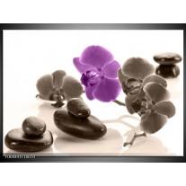 Glas schilderij Orchidee | Paars, Grijs, Wit