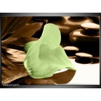 Glas schilderij Bloem   Groen, Bruin