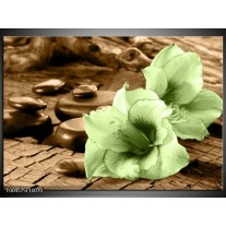 Glas schilderij Orchidee   Groen, Bruin
