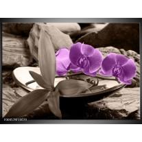 Foto canvas schilderij Orchidee | Paars, Grijs