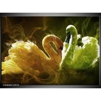 Foto canvas schilderij Zwaan | Geel, Wit, Groen