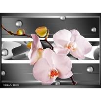 Foto canvas schilderij Orchidee | Grijs, Roze, Wit