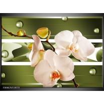 Foto canvas schilderij Orchidee | Groen, Roze, Wit