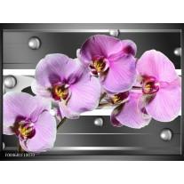 Glas schilderij Orchidee | Grijs, Paars, Wit