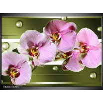 Glas schilderij Orchidee | Groen, Paars, Roze