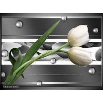 Glas schilderij Tulp | Grijs, Wit, Groen