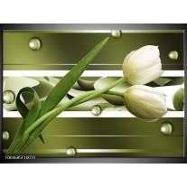 Foto canvas schilderij Tulp   Grijs, Wit, Groen