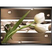 Glas schilderij Tulp | Bruin, Groen, Wit