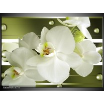 Glas schilderij Orchidee   Groen, Wit