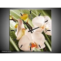 Wandklok op Canvas Orchidee   Kleur: Groen, Roze, Wit   F004696C