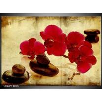 Foto canvas schilderij Orchidee | Rood, Bruin, Geel