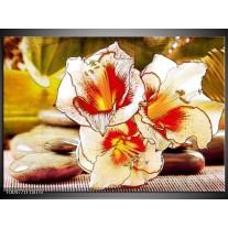 Foto canvas schilderij Bloem | Wit, Rood, Geel