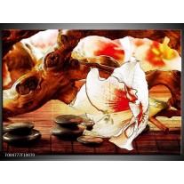 Foto canvas schilderij Bloem   Wit, Rood, Geel