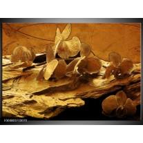 Foto canvas schilderij Orchidee   Bruin