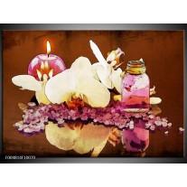 Foto canvas schilderij Orchidee   Paars, Wit, Bruin