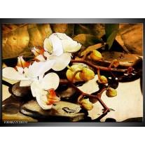 Foto canvas schilderij Orchidee | Bruin, Wit, Groen