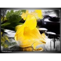 Foto canvas schilderij Bloem | Geel, Zwart, Groen