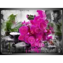 Foto canvas schilderij Orchidee | Paars, Groen, Grijs