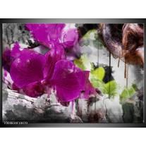 Foto canvas schilderij Bloem | Paars, Groen, Grijs