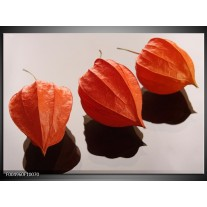 Foto canvas schilderij Spa | Oranje, Grijs, Bruin