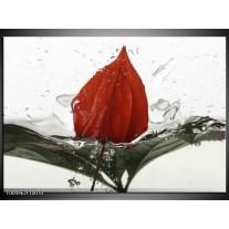 Foto canvas schilderij Keuken | Rood, Grijs, Wit