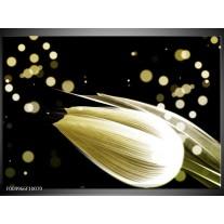 Foto canvas schilderij Tulp | Creme, Zwart