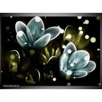 Foto canvas schilderij Krokus | Blauw, Groen