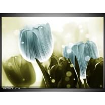 Foto canvas schilderij Tulp   Blauw, Groen