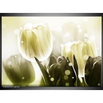 Foto canvas schilderij Tulp | Wit, Grijs