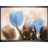 Foto canvas schilderij Tulp | Blauw, Grijs
