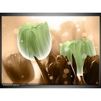 Foto canvas schilderij Tulp   Groen, Bruin