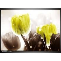 Foto canvas schilderij Tulp | Geel, Grijs