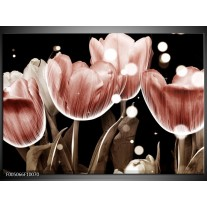 Foto canvas schilderij Tulp | Bruin, Zwart