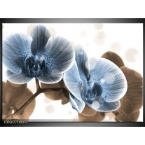Foto canvas schilderij Orchidee | Blauw, Grijs